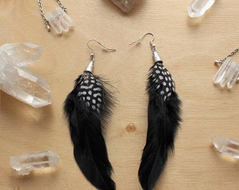 Back in black. Black and white spotted feather earrings. Black feather earrings.