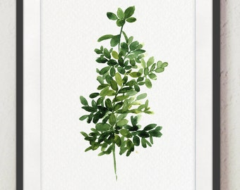 Thyme Painting Green Botanical Art Print, Medicinal Herbs Illustration Watercolor Wall Decor, Herb Leaves Kitchen Decoration, Thymus Plant