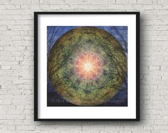 Mandala Art, Tree Moon Mandala, Surreal Mandala Collage, Abstract Moon & Tree Photo Collage Art, Limited Edition Art, Fine Art Photo Montage