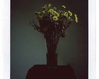 Yellow Flowers, Polaroid Photography, 8,5 x 10,5 cm, #629