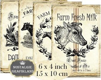 Farm Fresh Milk Cow Bull Dairy Products 6 x 4 inch Transfer Download digital collage sheet D270 Grain sack Cow