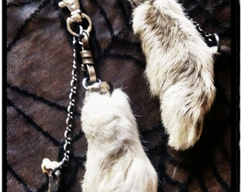 Lucky Rabbits Foot w/ Coyote Talon