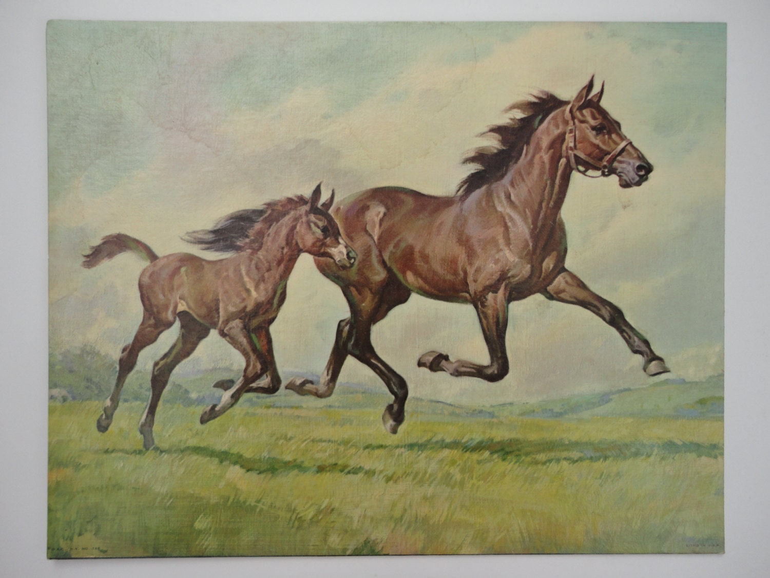 Vintage Horse Print Horse By Brown Winde Fine Prints 11 By