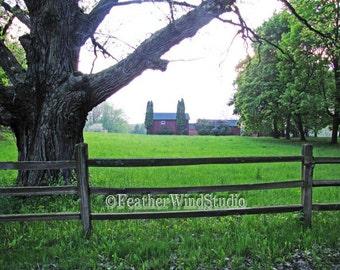 Red Barn Photography   Centennial Farm   Split Rail Fence   Large Tree   Hazy Landscape Photo   Home Decor   Michigan Wall Art   Farm Print