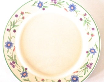 SUMMER CLEARANCE Discontinued Oneida Plates, Ava Pattern