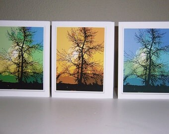 Photo Notecards, Assorted Notecards, Tree Photo Cards, Artistic Tree Cards