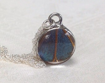 Real Blue Morpho Butterfly Wing Pendant.