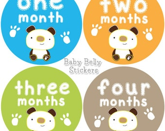 Baby Month Stickers, Monthly Baby Stickers, Bodysuit Stickers, Monthly Milestone Stickers, Baby Monthly Stickers, Baby Belly Stickers, Bear
