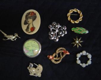 Ten vintage brooches