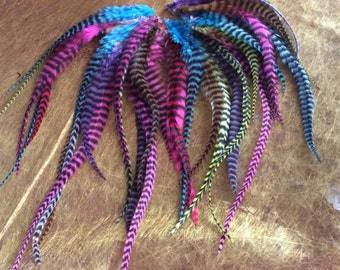 feathers pegs multicolored roosters grizzly