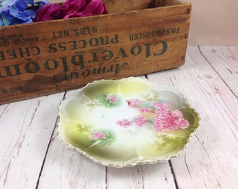 Wheelock plate,RS Prussia,floral,Wheelock Prussia,Trade 1 Mark,pink,green,collectors plate,hand painted,porcelain,antique,vintage,