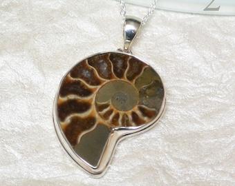 Ammonite Sterling Silver  Pendant   AM65
