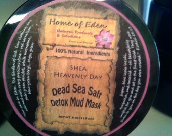 Dead Sea Detox Mud Mask 8 oz