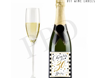 Instant Download Wine Label, DIY Wine Labels, Cheers 30 Years, Wine Labels, Decoration, 30th Birthday Favor-Champagne Stickers-Wine Stickers