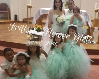 Mint Green Flower Girl Dress Mint Green Lace Flower Girl Dress LINED skirt  Dress Sizes 18 Mo up to Girls Size 10