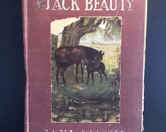 Black Beauty, Anna Sewell, Early Edition, Uncommon Illustrated, 1907