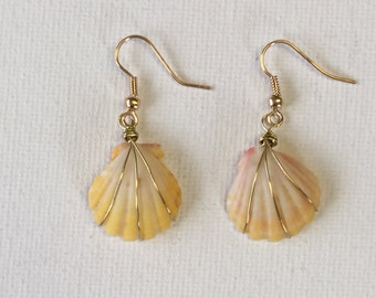 Hawaii Sunrise Shell 3/4 Inch Gold Triple Wire Wrapped Dangling Earrings
