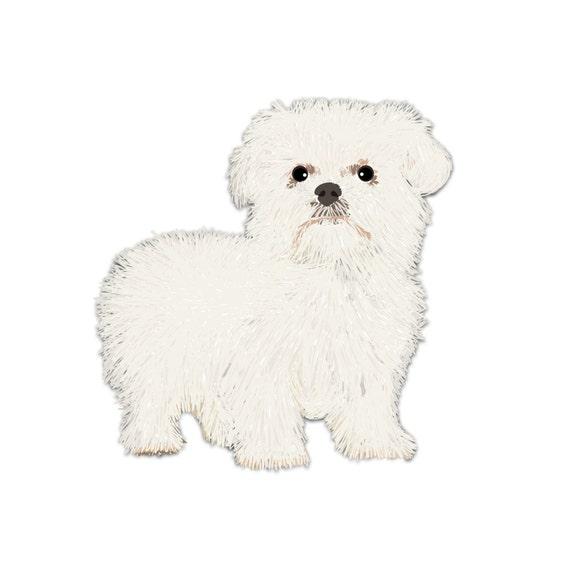 maltese dog clipart - photo #36