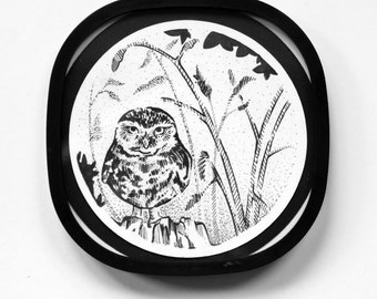 Burrowing Owl - DotArt Collection