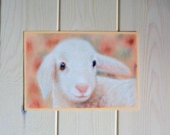 Lamb Original pastel drawing