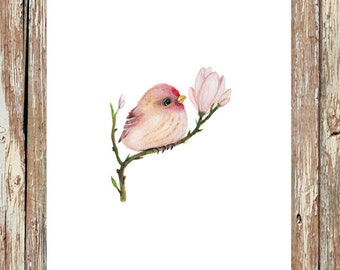 Watercolor birds, baby bird, bird prints, bird painting, bird watercolor, bird nursery, bird art, bird decor, bird gift, baby redpoll, pink