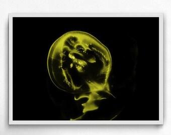 jellyfish yellow underwater photography,  jellyfish art print