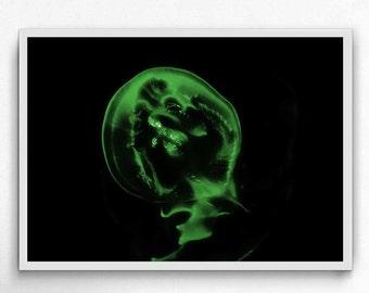 jellyfish green underwater photography,  jellyfish art print