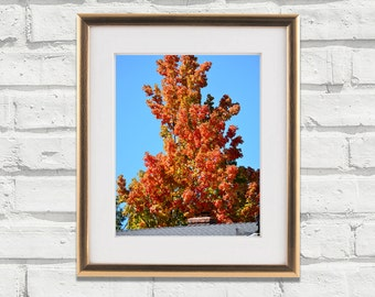 Autumn Fall Tree With Orange Leaves & Chimney Print