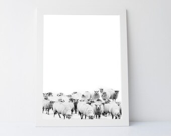 Black White Sheep Prints, Printable Gift, Black White Wall Prints, Sheep wall art,sheep art,sheep prints, black white wall art, modern print