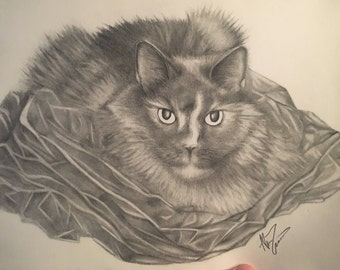 Personalized Pet Art - Pencil Drawing