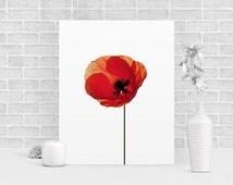 Poppy Print, Minimalist Art, Large, 16x20, Poppy Poster, Red, Flowers Wall Art, Modern Print, Nature Art, Room Decor, Scandinavian Art