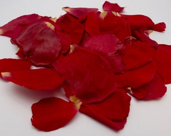 Rich Rose Freeze-dried Rose Petals