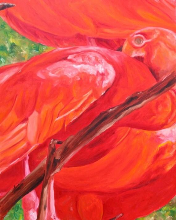 Scarlet Ibis Fine Art - Animal Print - Color Wildlife Home Decor - Contemporary Abstract Artwork