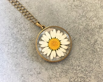 White Chrysanthemum (dried and pressed) in a Slim Antique Bronze Open-back Bezel Resin Necklace, Resin Pendant, Pressed Flower Necklace
