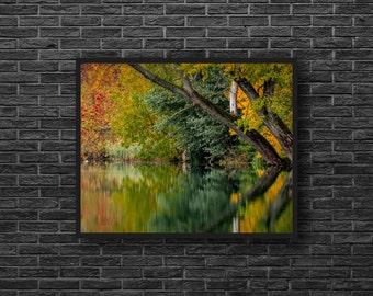 Autumn Lake Photo - Autumn Forest Photography - Lake Print - Yellow and Green - Fall Wall Decor - Nature Wall Decor - Autumn Landscape Photo