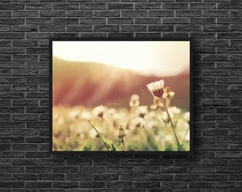 Wild Flowers Photo - Meadow Flowers Photography - Meadow Photo - Summer Meadow - Summer Photo - Nature Wall Decor - Summer Wall Decor