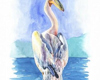 "Watercolor Print  ""Pelican 2""  Bird Art, Bird Print, Wall Decor, Bird Nursery print"