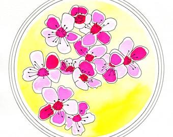 Pink Blossoms - 8 x 10 Print