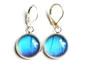 Real Butterfly Wing Earrings. Blue Morpho. Butterfly Dangle Earrings. Real Blue Morpho Butterfly Wing Jewelry.