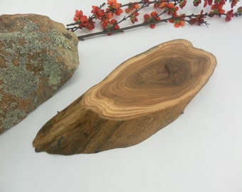 Gorgeous Large Elm Tree Slice- Wall Hanging, Candle Stand, Centerpiece, Large Wood Slice (WS6014)