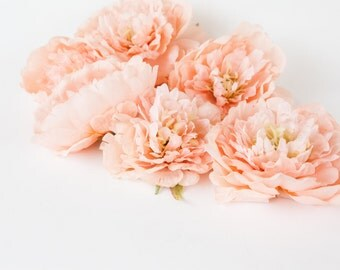 Set of 7 Medium Light Coral Peach Peonies - up to 4.5 Inches - read description - ITEM 0429