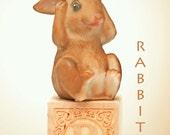 rabbit photo, abc art, letter photo, nursery art, nursery decor, childs room decor, child room art, letter art, alphabet photo, alphabet art