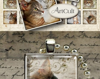 Digital Collage Sheet CATS 1x1 inch and 7/8x7/8 inch size images Printable download for glass or resin pendants magnets bezels photo trays