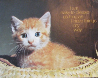 Vintage Argus Poster 1980s Kitty Cat Funny Saying My Own Way