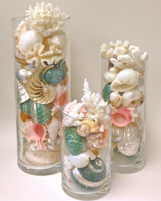 Decor coquillages corail et toiles de mer en 8 bouteilles - Decoration coquillage mer ...