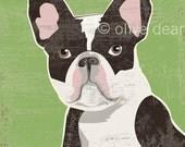 French bulldog, fine art print