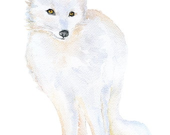 Arctic Fox Watercolor Painting 11 x 14 Fine Art Giclee Print Reproduction