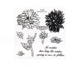 CTMH B1299 Spring Equinox Close To My Heart Flower Stem Leaves Dahlia Garden Encouragement Stamps Clear Stamp Set Retired Unmounted USED