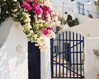 Santorini Greece Photography Print - Bougainvillea Photograph - Greek Island Decor - Mediterranean Wall Art - Fuchsia White Navy Home Decor