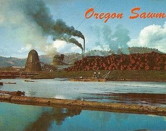 Vintage Oregon Sawmill Postcard